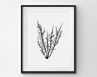 Minimalist Botanical Wall Art, Modern Botanical Art, Black and White Plant Illustration, Printable, Minimalist Decor, Modern Botanical Print