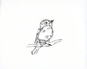 Skizzenbuch Verkauf - Vogel #12 Original Tuschezeichnung - 8 x 10 Songbird Original-Kunst