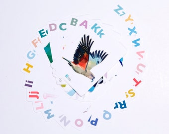 Alphabet cards, abc flash cards, New Zealand ABC cards, New Zealand alphabet cards, Kiwi abc, New Zealand birds, Classroom art, Kiwiana abc