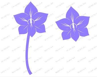 SINGLE Orchid  svg digital download