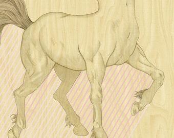 Centaur of Attention 5x7
