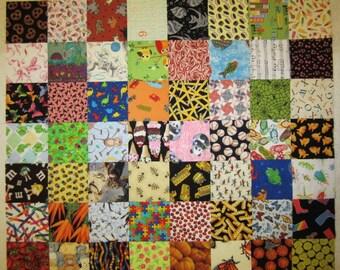 I-Spy Fabric Squares - 34 squares