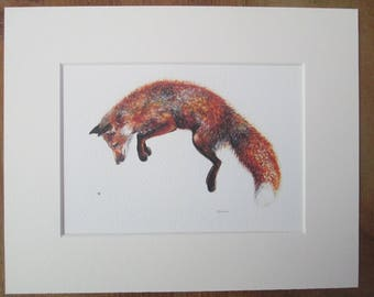 Fox and bee, Felix, watercolour print in a 10 x 8 mount, ready to pop into a frame.