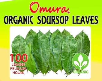 Omura ORGANIC SOURSOP LEAF (100+ Leaves) S/L