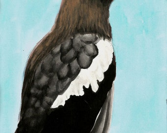 Stellar Sea Eagle Watercolor Bird Print