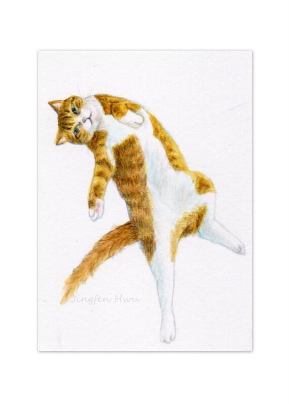 Cat Art Print A Cat Lying On His Back Cat Drawing Cat