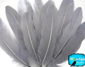 Goose Feathers, 1/4 lb - GREY Goose Satinettes Loose Wholesale Craft Feathers (bulk) : 3199