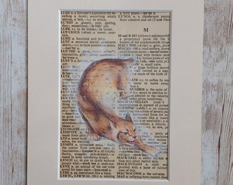 Image Transfer Lynx on vintage  Dictionary Page, Mixed Media