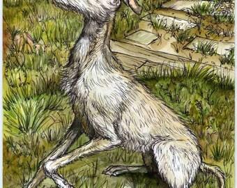 A Little Grace - Lurcher Hound Dog Print