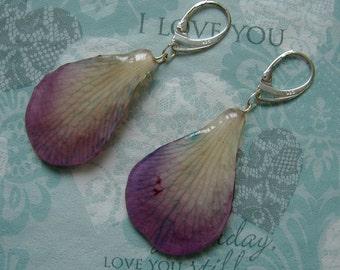 REAL Orchid Petal Earrings - Purple Mauve Cream Blue Orchid Flower Petals - Sterling Silver Earrings