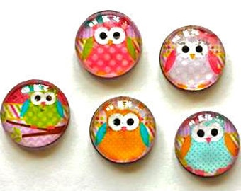 Owl Magnets - Owls - Set of 5 - Free U.S. Shipping - 1 Inch Domed Glass Circles - Gift for Mom, Sister, Niece