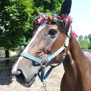 Pet flower crown Photo shoot prop Wedding photo prop Horse flower crown Horse flower halo Summer wedding photo shoot Horserider wedding