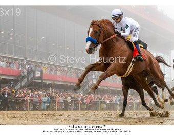Justiflying - Justify jumps in the 143rd Preakness Stakes