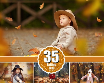 35 falling leaves  Overlays, Photoshop Overlays, Photo Prop, Autumn texture, fall leaves, realistic, natural look, png file