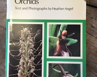 Orchids - 1970s flower book - flower pictures - botanical book