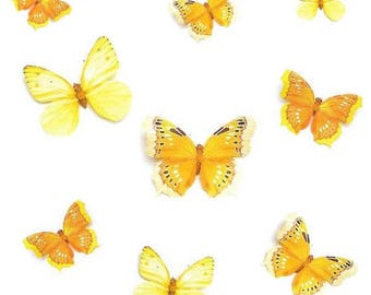 11cm paper clip with Butterfly (yellow / orange)