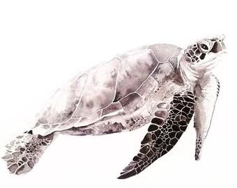 Aquarell-Schildkröte, Turtle drucken, bereit, Rahmen, Babys Kinderzimmer, Animal Art, Meerestiere, schwarz und weiß