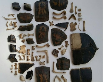 Lot of Forest Found Turtle Shell Fragments & Bones : Nature Maryland Eco Friendly Ethically Sourced