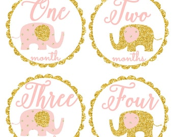 Baby Girl Monthly Stickers, Baby Month Stickers, Bodysuit, Blush Pink and Gold Elephants, Elephant Nursery Decor,  Photo Prop