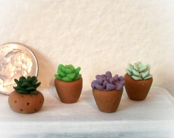 One Wee Succulent Artisan Dollhouse 12th Scale Tiny Miniature Hand Sculpted Home or Garden Plant Your Choice