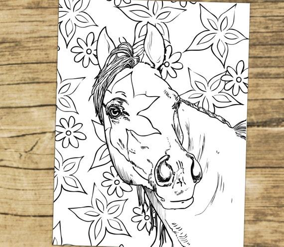 Malbuch für Erwachsene Erwachsene Malvorlagen Pferde Pferde