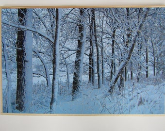 Wooden Jigsaw Puzzle, Wisconsin Winter
