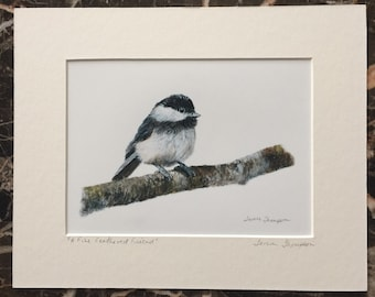 Chickadee Giclee print, songbird art, cute bird art, bird on a birch branch, realism bird art, bird art print, garden bird art, realism art