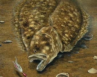 Image result for found in a summer flounder fluke belly