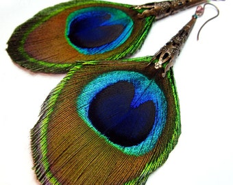 Odalisque Peacock Feather Earrings - Very Long