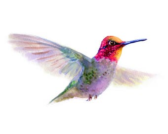 Hummingbird Watercolor Giclee print, Bird Fine art print of original painting