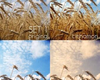 NEW: 25 Photoshop Actions - Set 1, Set 2 & Set 3 - Special Offer, Save 8 Dollars