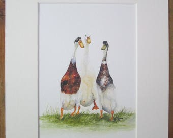 Ducks, Runner ducks, watercolour print in a 10 x 8 mount, ready to pop into a frame.