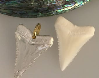 Great White Shark Tooth  - Fabulous Silver & 18ct Yellow Gold Pendant