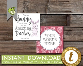 Easter teacher tag etsy some bunny editable gift tag easter teacher appreciation week thank you tag amazing teacher rabbit gift tag flower printable negle Choice Image