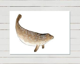 Ring Seal Illustration, nautical wall art, kids room decor, sea life painting, ocean animal print