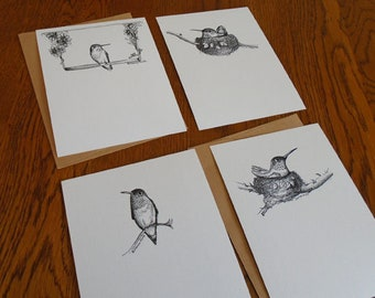 Pen &  Ink notecard set, Monica Minto, Hummingbird Illustrations, Original Artwork, Archival Print, Wildlife Greeting Card