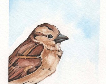 Brown Bird   4x6 Original Watercolor