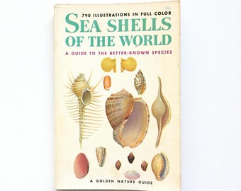 Golden Nature Guide- Seashells of the World / Vintage Golden Guide / Book on Shells / Vintage Field Guide / Homeschool Book