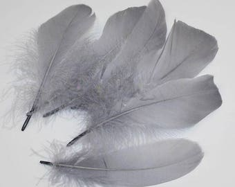 100 Grey Goose Feather for handmade items feather centerpiece,hat,fascinator,millinery 14-18cm