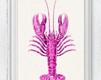 Ocean life art fuchsia Lobster n02 - Wall decor lobster print - sea life print-Sale , Marine sea life illustration A4 SAS027