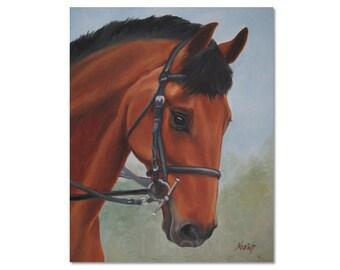 Horse - Original Oil painting by Noewi - dressage bay horse portrait