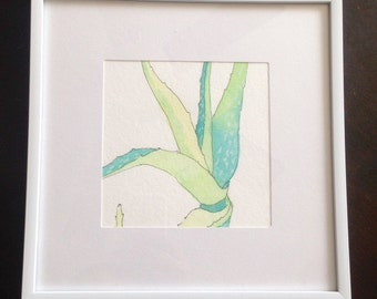 Aloe Watercolor #3