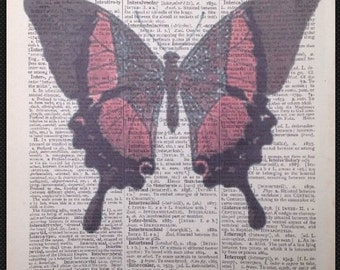 Vintage Butterfly Insect Print Antique Vintage Dictionary Print Page Wall Art Picture Red