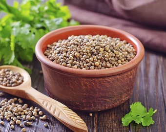 Aprox 180 - 190 (2 g) Organic eco Coriander, Cilantro seeds (Coriandrum sativum L.) fresh seeds best before 2018