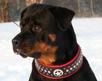 Leather Half Check Dog Collar