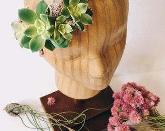 Succulent Bridal Halo // Succulent Crown // Flower Crown