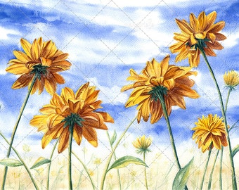 Sunny Flowers - Watercolor Painting & Print