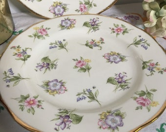 Brand New, Royal Albert 'Spring Meadow' Dessert Plate, 2 Available