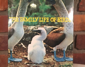 70s The Family of Birds Hardcover Book