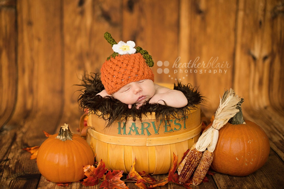 Newborn Pumpkin Pictures